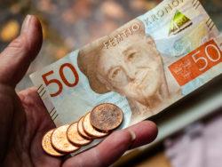 EN hand som håller i sedlar och mynt