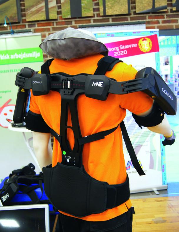 Bild på exoskelettet