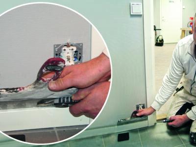 Henrik Gustafsson visar hur det kan se ut när man som målare jobbar vid en vägg där eluttagets kåpa tagits bort.
