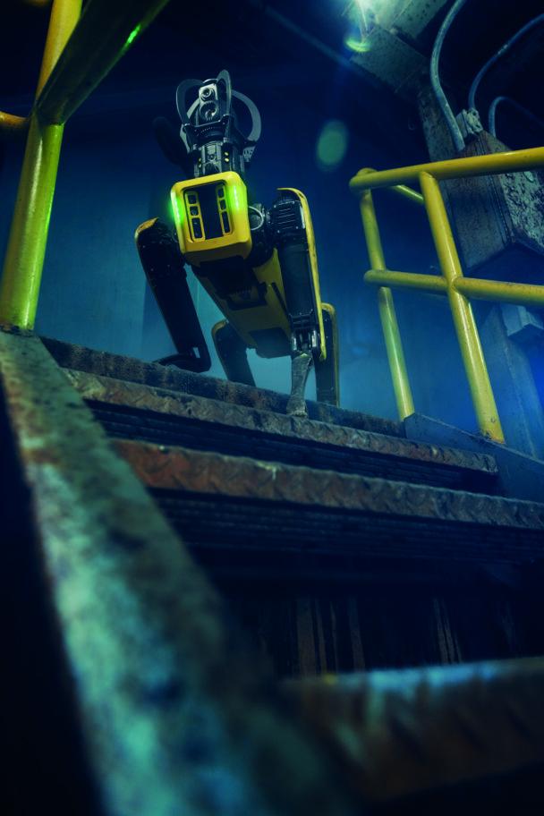 Robothunden står längst upp i en trappa
